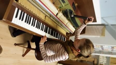 Klavier Flügel Service