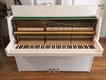 Rippen Klavier Berlin